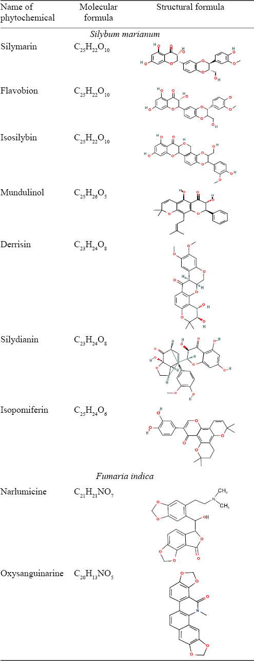 Computer-aided analysis of phytochemicals as potential dengue virus